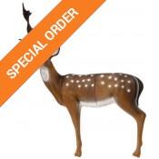 3D Animal Targets (35)