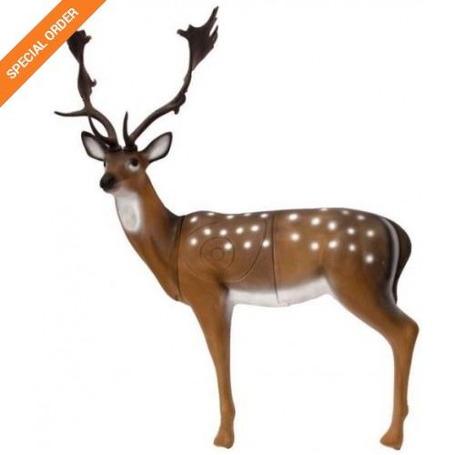 SRT Fallow Deer