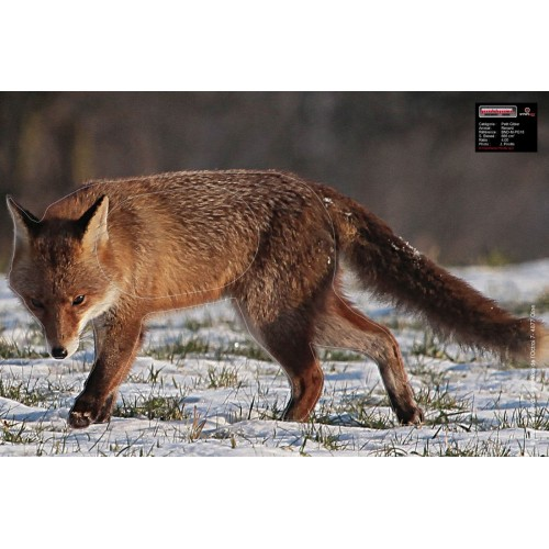 Maximal Fox