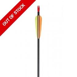 Alloy Leisure Arrows