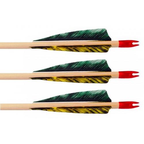 Traditional POC Field Arrows